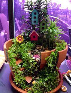 Wed Jul 07 2021 Miniature Garden